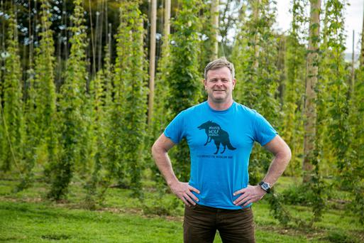 Craft brewer Simon Lynch from Wicklow Wolf. Photo: Alan Rowlette