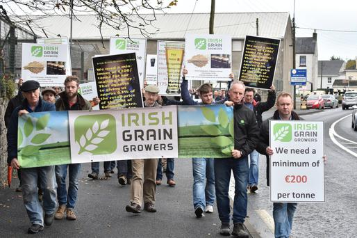Grain growers protest in Athy. Photo: Roger Jones