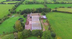 The 127 acre farm has an extensive array of sheds.
