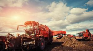 The viability of beet production in Ireland has been questioned
