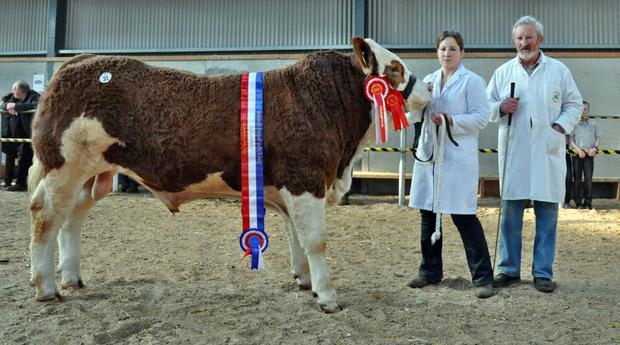 Jennie and Seamus Aherne with Rubyjen Harry's Fox sold for €6,600 after being judged Male Champion at Tullamore.