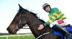 Festive cheer: Tom Hamilton after his first win in Ireland aboard the JP McManus-owned Aegos at the Christmas Festival in Leopardstown last year