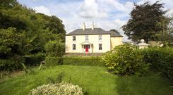 Ballybaun house and stud at Rathnure, Enniscorthy, Co Wexford