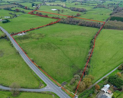 The 36ac farm near Delvin, Co Westmeath sold in three lots to local buyers