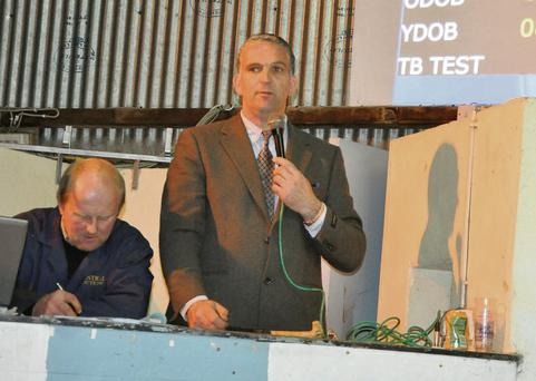 Michael Harty selling at Nenagh Mart, while sales clerk Con Ryan keeps an eye on the proceedings