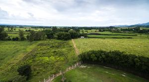 Many complex land ownership issues come before the courts
