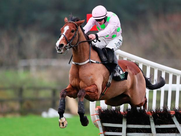 Faugheen was pulled up