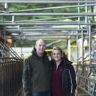 Diarmuid Scannell and his wife Briege Corkery have entered into a share milking arrangement with Michael Batterman in Cookstown, Co Cork. Photo: Clare Keogh