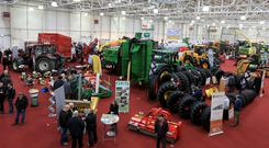 Display at the FCI conference at the National Show Centre. Photo: Gerry Mooney