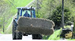 A study by Teagasc found 90pc of farmers in the north-west are facing serious fodder shortages. Stock Image