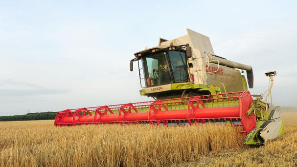 Over 1,000 hectares of land for new farmers