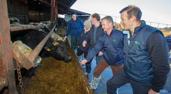 The Teagasc sc team get set for action at last week's animal health on Alan McDonnell's farm. Photo: Jeff Harvey/HR Photo