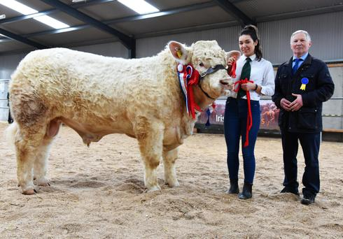 Jane Ryan, Drom, Borrisoleigh, Co Tipperary and David Erskine, judge with the Champion of the Show and highest price bull, Kilvilcorris Mark, at Tullamore which sold for €9,000.