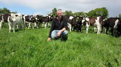 Pat Bowden will host a Teagasc Green Acres event on his farm in Lisdowney, Co Kilkenny later this month