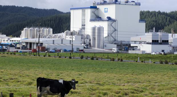 Global dairy prices climb higher, volumes drop at auction
