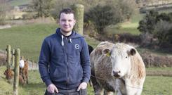 Sean Vaughan pictured on the family farm in Kilbane, Co Clare. Photo: Liam Burke, Press 22