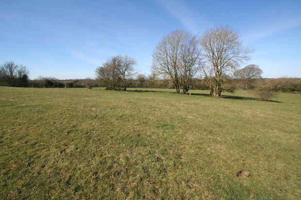 The 120ac holding and farm buildings are located at Ballinacor, 20km west of Mullingar
