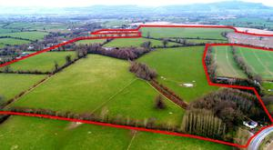 Mount Richard on 150ac is located 1km from Carrick-on-Suir