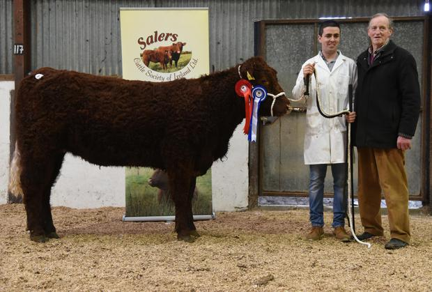 Reserve Champion of Show Heifer, Sligo Pepita, with Niall Hunt from Lisbaleely, Gurteen, Co Sligo and Michael Fox, judge