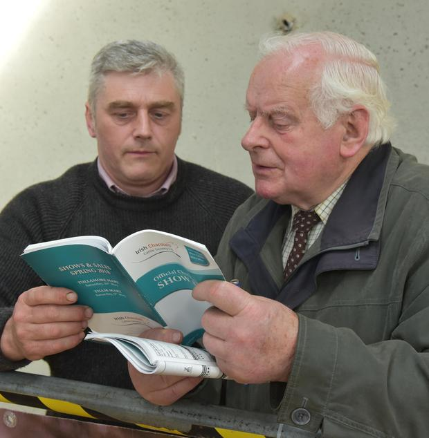 Carefully studying the entry at the Charolais Society Bull Show and Sale are Hugh Crawford from Glenarm Farm, Antrim and Basil Buchanan from Sligo, a former chairman of IFA Animal Health.