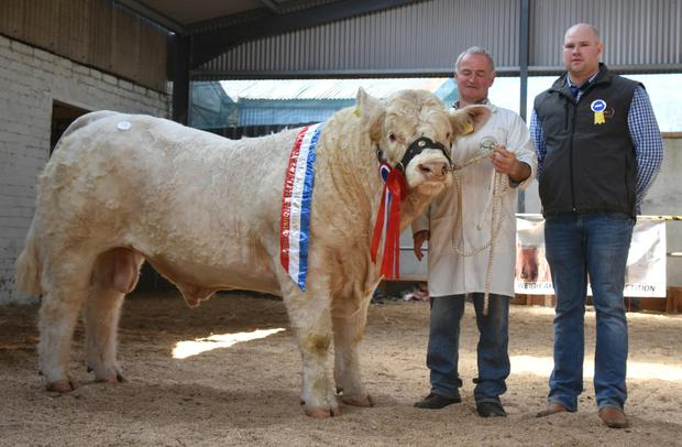 Mattie Kelly from Cloughbrack, Newbridge, Ballinasloe with champion of the show and sale price topper Cloughbrack Matthew, which sold for €7,200, with Stewart Wilson, show judge.