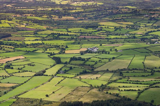 Munster land values increased by 11pc