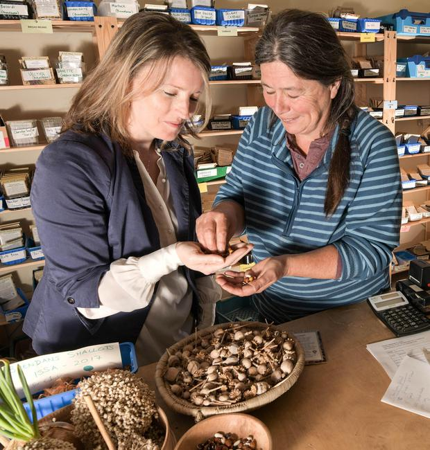 General Manager Jennifer McConnell and Jo Newton of Irish Seed Savers check the quality of their seeds. Photo: Kevin Byrne Photography