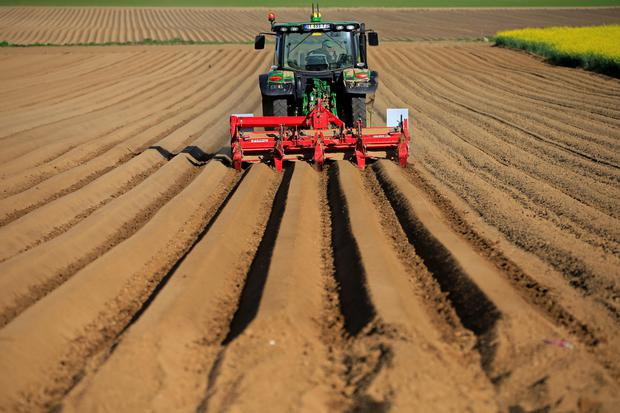 A farmer drives his tractor in his field as he plants potatoes in Estourmel near Cambrai, France April 26, 2018. REUTERS/Pascal Rossignol