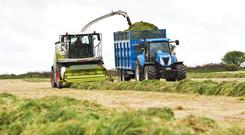 Alternatives to diesel in farming are a long way off