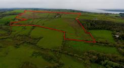 The 135ac farm has views over the Shannon Estuary near Foynes