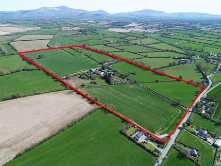 The 65ac is in one block and laid out in nine fields, divided between tillage and grazing