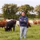 Thomas O'Connor on the family farm in Moone, Co Kildare. Photo: Siobhan English