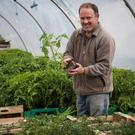 Padraig Fahy and his wife Una grow 30ac of organic vegetables on their farm in east Galway