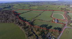 The 65ac roadside farm in Co Waterford includes a purpose-built gallop, a series of paddocks and an internal roadway