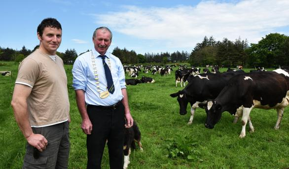 Bryan Daniels with Peter Kennelly, President, IHFA with some of the Raheenarran Herd at Kilmoganny