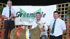 Declan Miley with his Champion of Show, show judge Myfyr Evans (left) and Edward Buckley, Chairman of the Irish Charollais Sheep Society