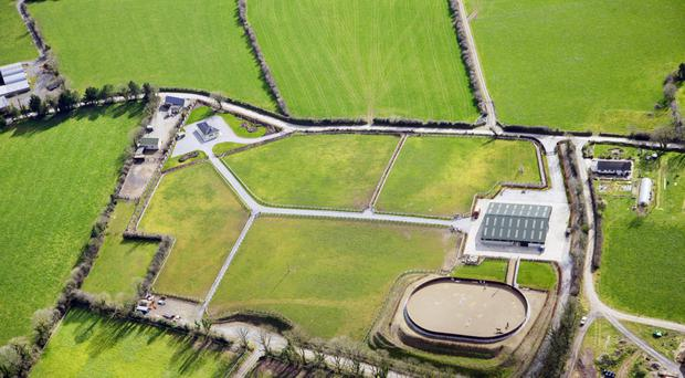 Double whammy in north Cork - Two substantial residential farms - one grassland, the other equestrian - are on the market in the same parish