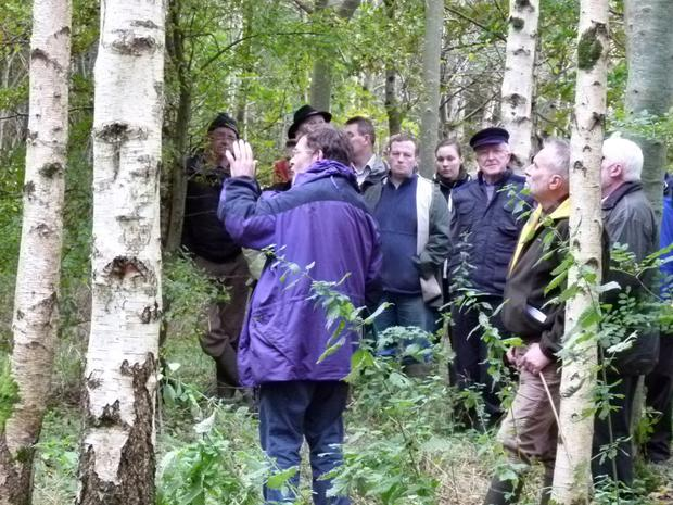 Discussions will be facilitated by a professional forester . Photo: Teagasc.