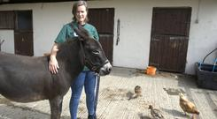Gillian says there is a lack of support for large animal vets. Photos: Roger Jones