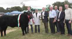Minister for Agriculture, Michael Creed, presenting the Golden Vale Marts Beef Championship Cup to Michael Friel, Letterkenny, Co Donegal at Cappamore Show, Co Limerick, with Ciaran Gibbons, Letterkenny, Paddy Ryan, (secretary) Richard O'Beirne, (judge), Senator Kieran O'Donnell and Tom Neville, TD