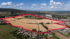 The 110ac property at Cahirabbey Upper