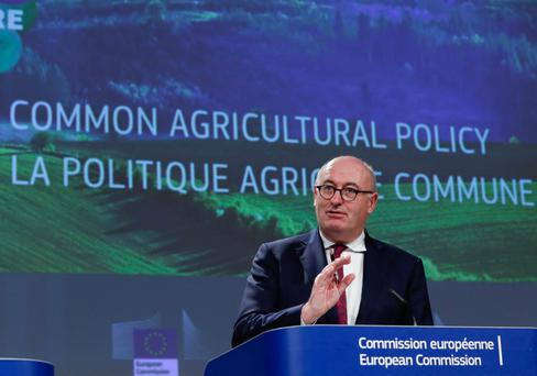 EU Agriculture Commissioner Phil Hogan. Photo: Reuters