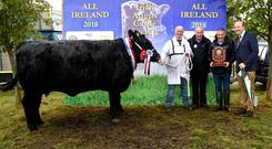 Supreme Irish Angus All Ireland Champion 2018 and RDS Champion of Champions 2018, Mayo Karin, with Gerard Kilgallon, Mayoabbey, Claremorris, exhibitor, Pat Murphy, judge, Michael Brady, sponsor, A W Ennis, and John Appelbe, President, Irish Angus Cattle Society.
