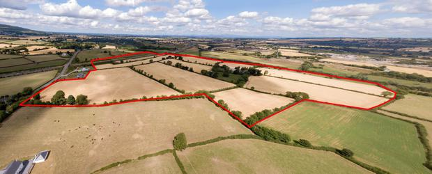 The 126ac farm in Tomard in Carlow sold in two lots.