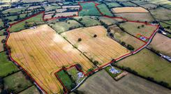 Two lots of the 125ac farm at Carnaross near Kells sold for €750,000 at auction