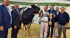 John Kirby, Director, National Dairy Show, judge Brian Carscadden from Canada, John Dowling from Balldonnell, Co Dublin with Clonpaddin Fame ET, the Overall Champion of the Show 2017, and Tadgh Burke, Laura Fitzgerald and Mervyn Eager.