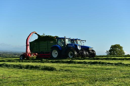 Wayne Smyth of GWM Smyth contractors cutting the second crop of silage in Knockdrumagh Co Carlow last month. Some contractors expect to be working into November on a third cut as autumn grass growth eases fodder concerns in the south and east. Photo: Roger Jones