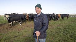 Robin Talbot pictured on the family farm in Ballacolla, Co Laois is a lifelong suckler farmer. Photo: Alf Harvey