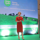 Tara McCarthy, CEO of Bord Bia, speaking during the Origin Green trade mission to Indonesia and Malaysia