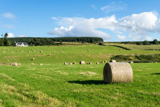 Revenue state that parcels of land of less than two acres are too small to be considered agricultural property